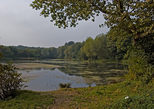 Lake at Oare Gunpowder Works Country Park
