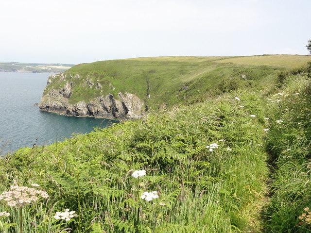 The Coast Path to Borough Head
