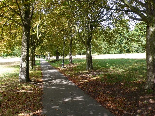 Path in Alexandra Park