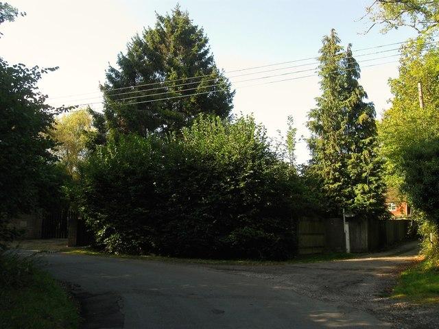 Jeremy's Lane