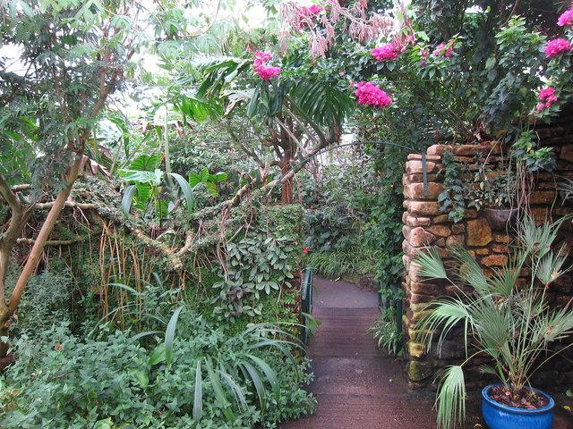 Stratford-upon-Avon Butterfly Farm