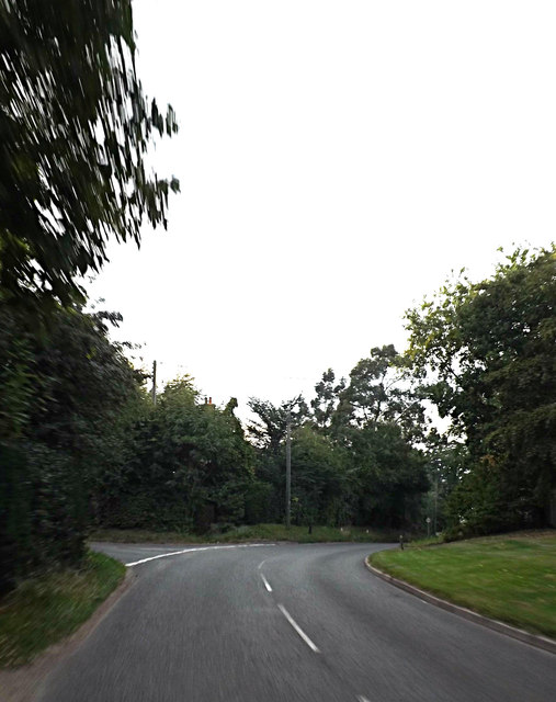 Denmark Hill, Palgrave