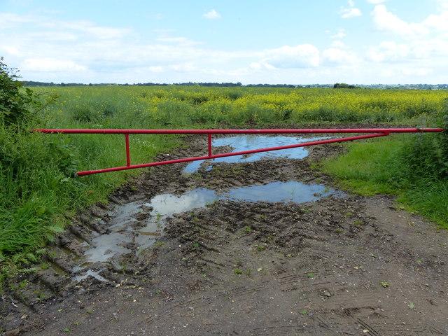 Field entrance along the B4455 Fosse Way