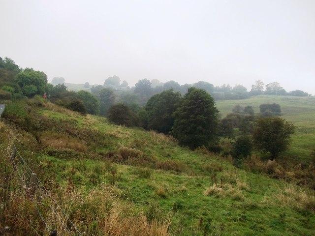 View across Bradbourne Brook