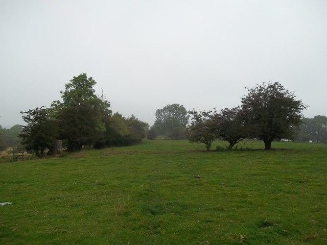 Footpath near Sitterlow Farm