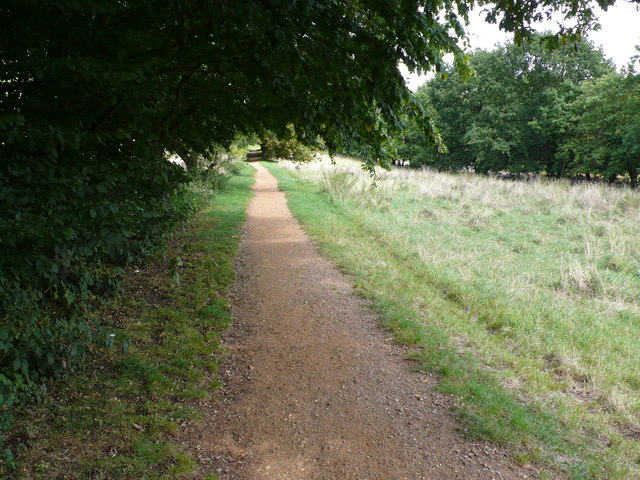 Path in Alexandra park