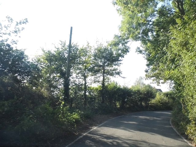 Bend on Springwell Lane, Hill End