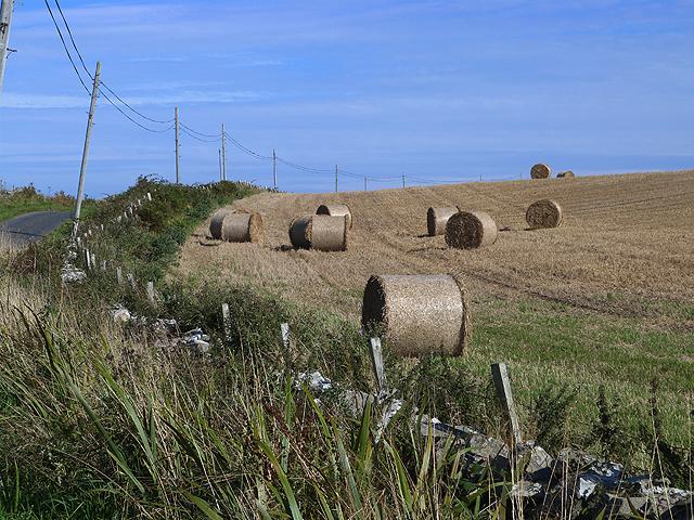 Hay bales near Sunderland Farm