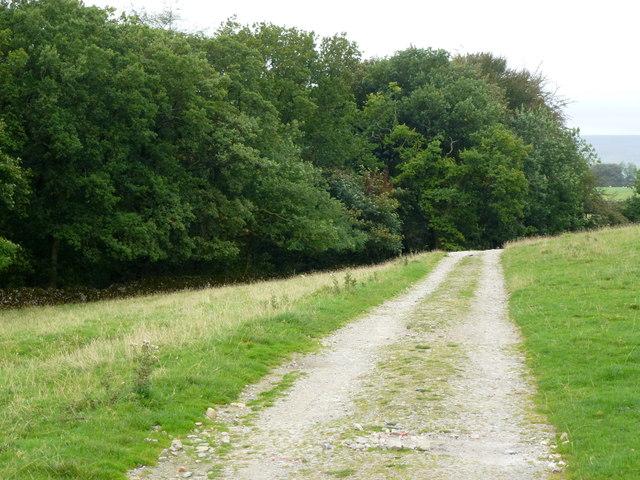 Heading towards Clapham