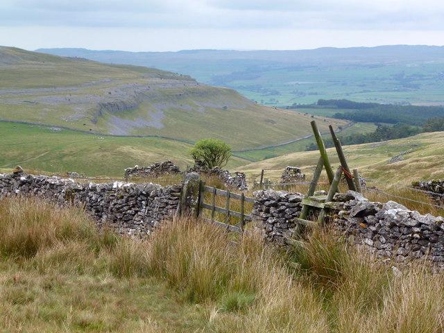 Gate and stile in moorland wall