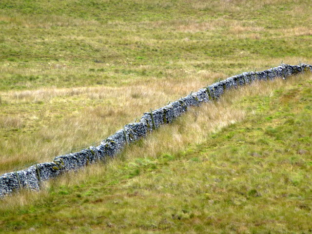 Dry stone wall east of Fell Beck