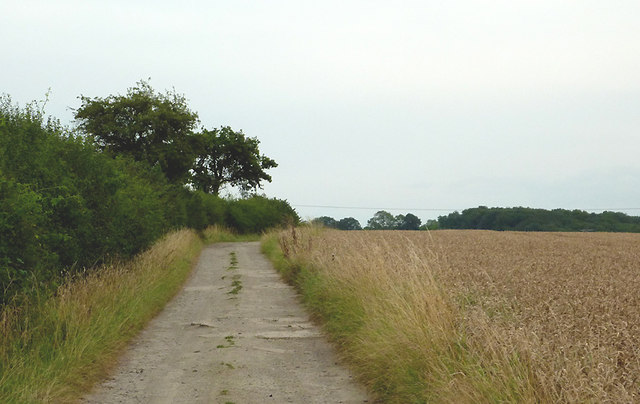 Farm road near Pathlow, Warwickshire