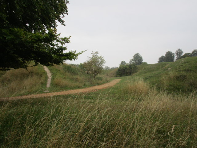 Danebury Hill Iron Age Fort