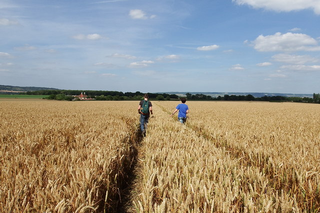 Footpath out of Offham