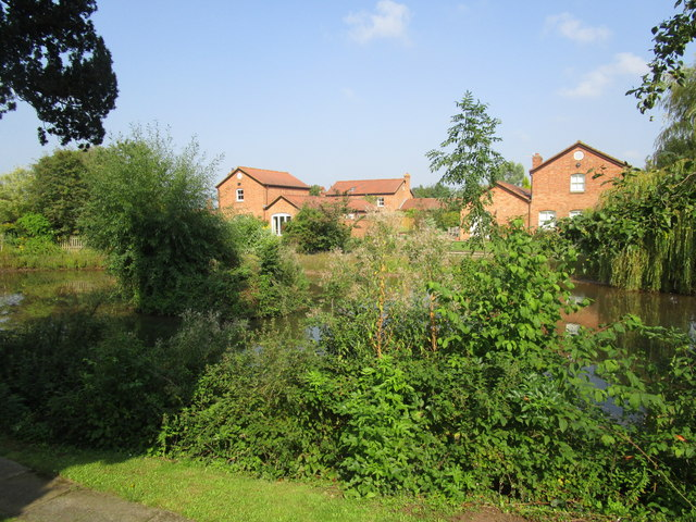 Pond and housing at Churcham