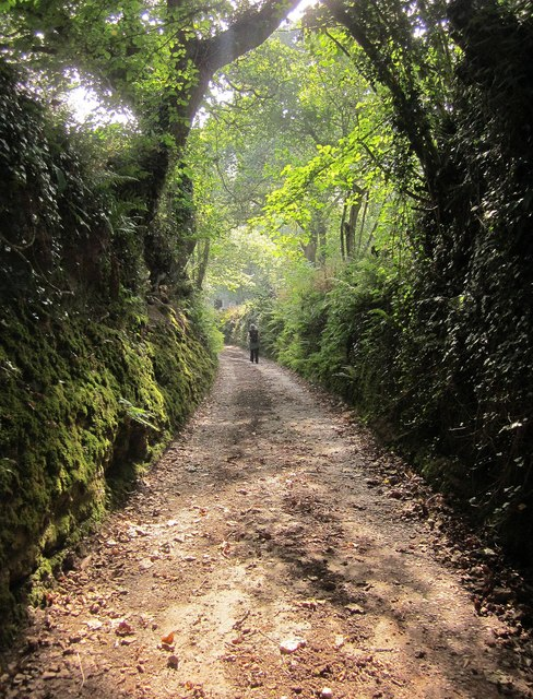 Green lane to Talland