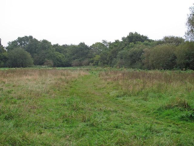 East Marsh, Cranham Marsh Nature Reserve
