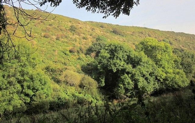 Valley behind Talland