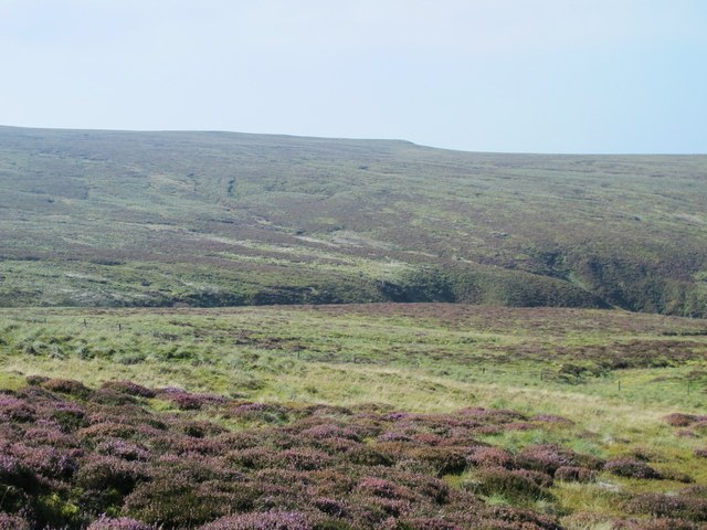 Moorland around the cleugh of Howgill Beck (2)