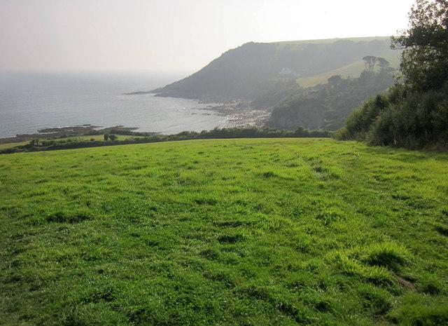 Field above Talland Bay