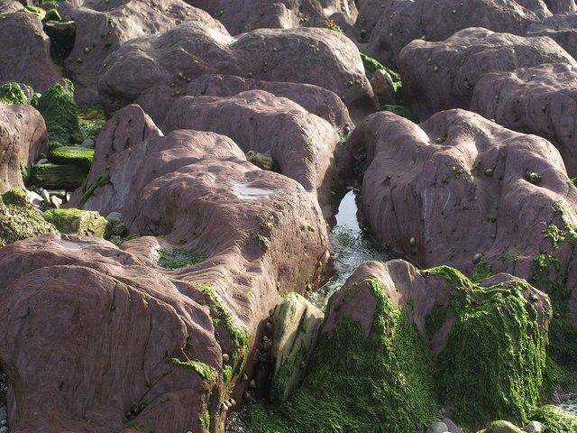 Rocks, Rotterdam Beach