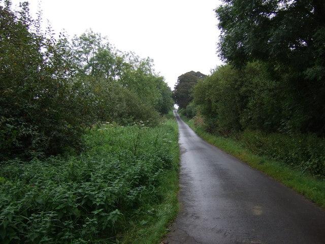 Lane heading south near Scawby