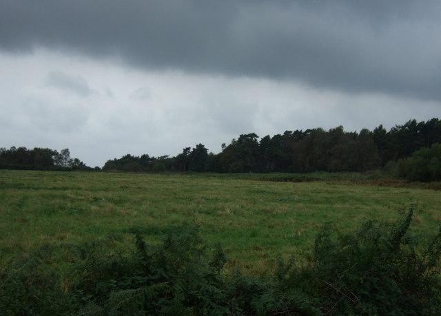 Farmland and woodland, Greetwell