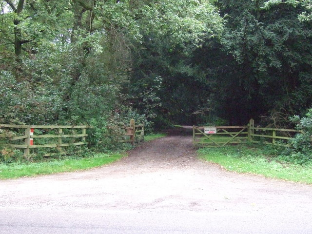 Track into Middleton Wood