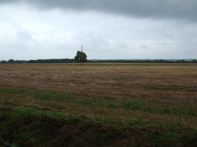 Stubble field, Top Farm
