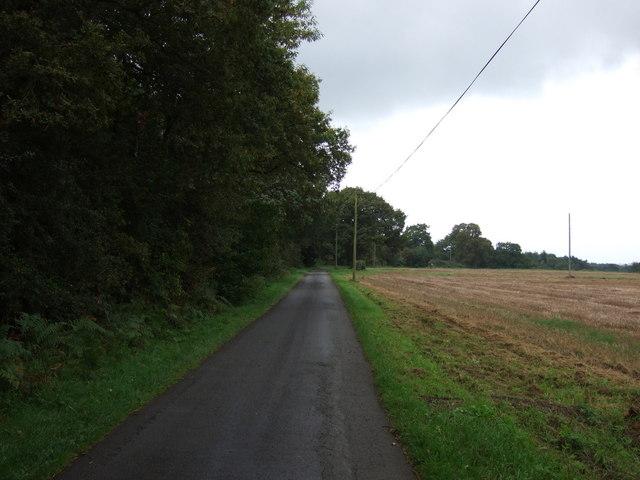 Lane heading south west near Top Farm