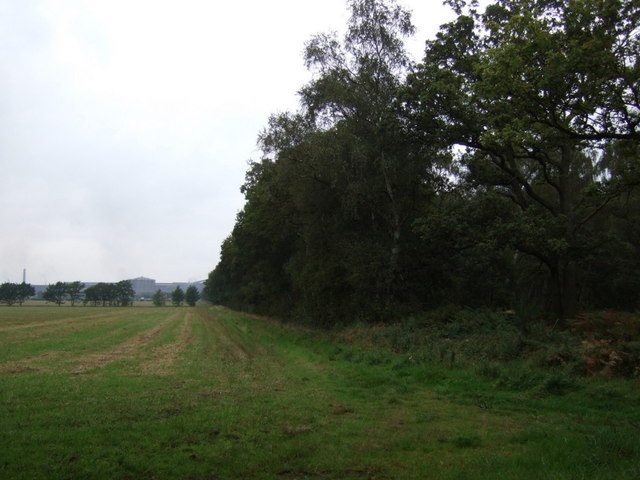 Farmland beside Sweeting Thorns Woodland