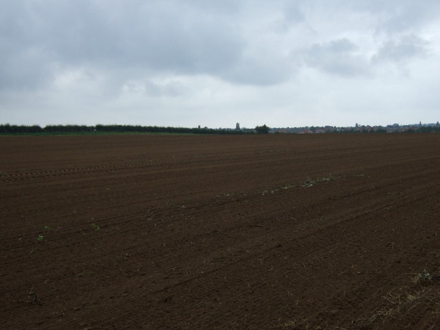 Farmland north of Holme Lane