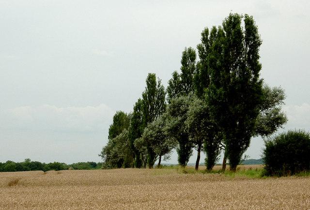 Farmland north-west of Wilmcote, Warwickshire