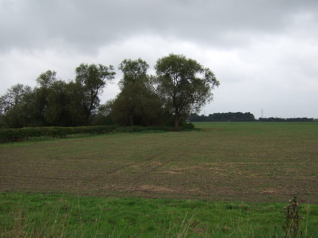 Farmland west of Scotter Road South