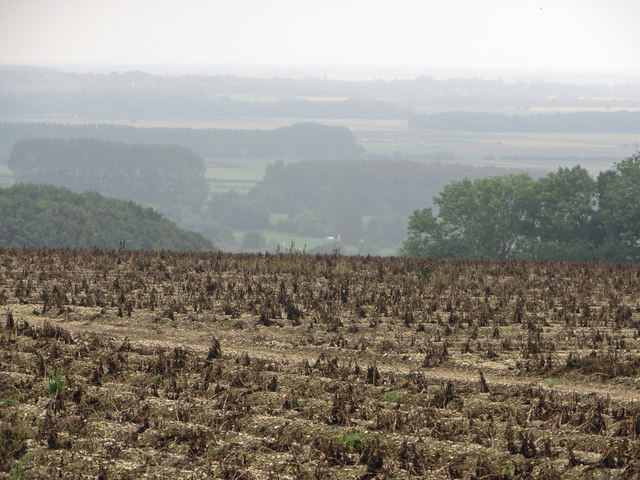 Potato Field near Saxby All Saints