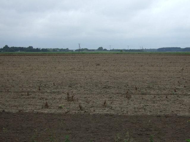 Farmland north of Burringham Road (B1450)