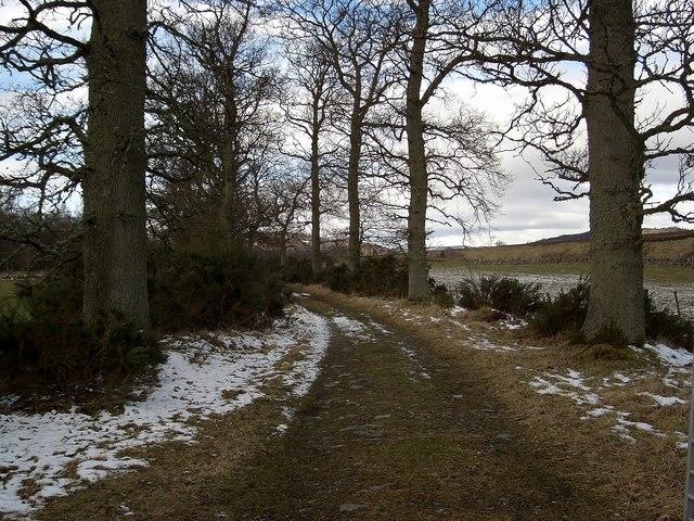 The Douglasfield Track