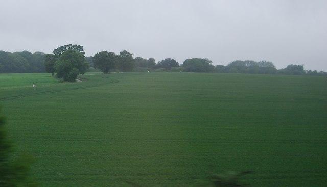 Farmland, Wych Elm Lane
