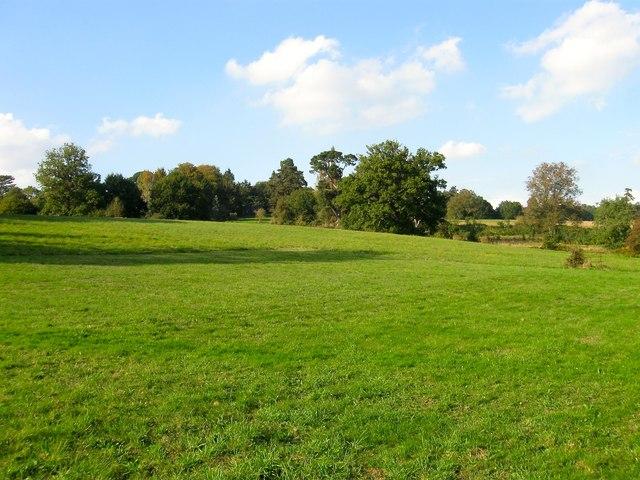 Peartree Field
