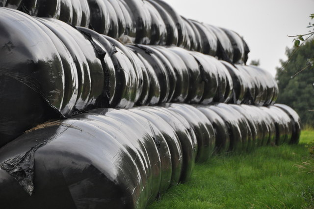 West Somerset : Silage Bales
