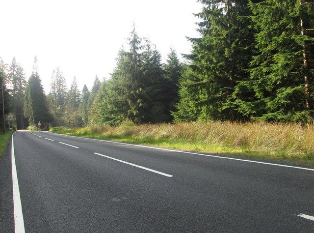 The B836 heading west through Dalinlongart Wood