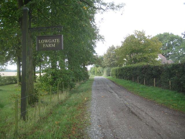 Sacombe: Lowgate Lane Roman Road