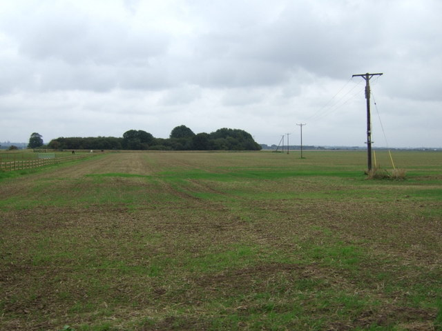 Farmland south of Burringham