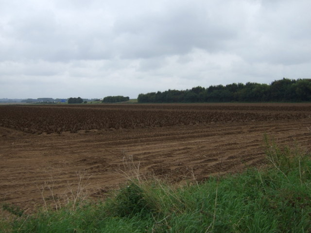 Farmland towards the M180