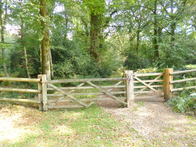 Godshill Inclosure, gates