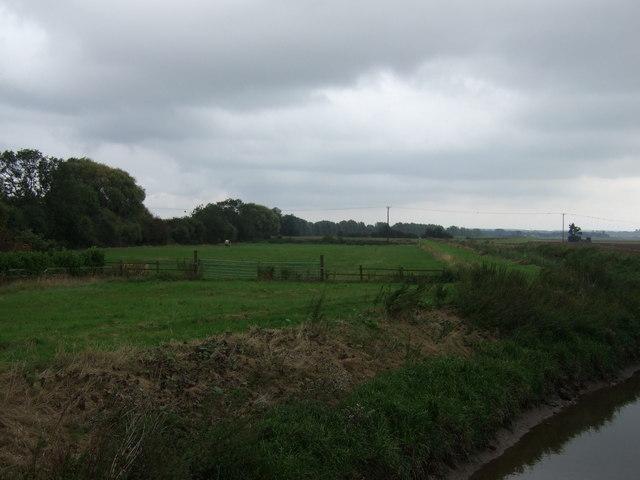 Farmland beside Bottesford Beck, East Butterwick