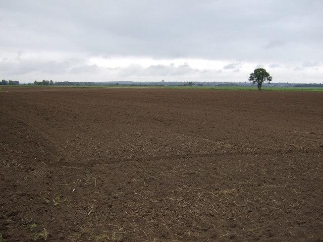 Farmland near Highfield Farm