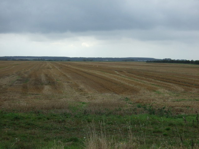 Stubble field, West Grange
