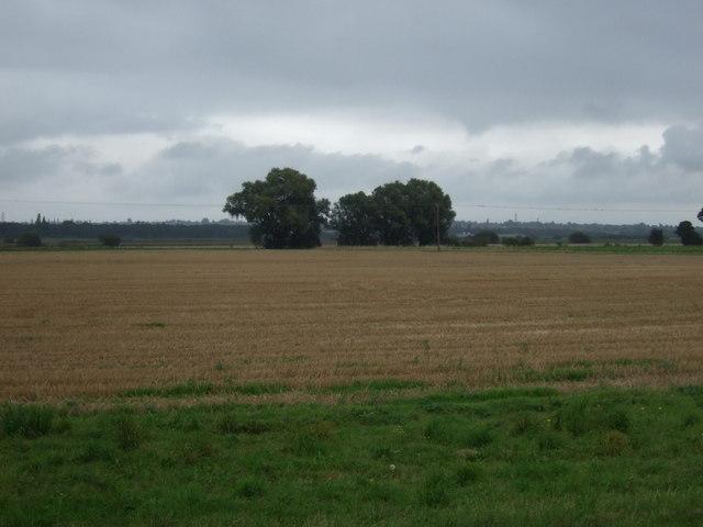 Farmland of Butterwick Road