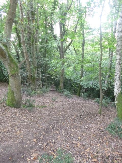 Woodgreen, Castle Hill
